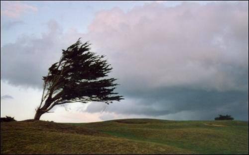 Quel est le dieu du vent ?