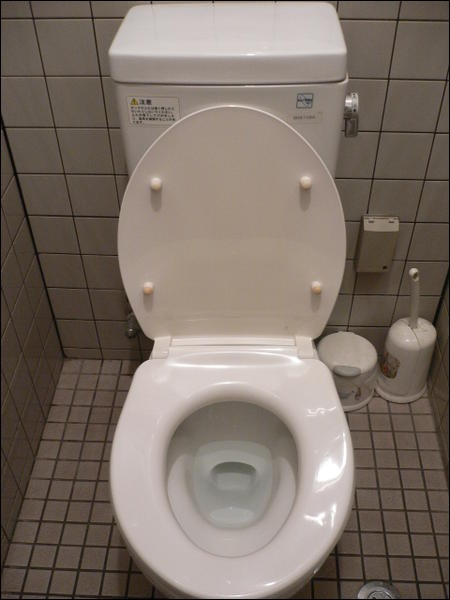 Apparemment, l'eau des toilettes est potable !