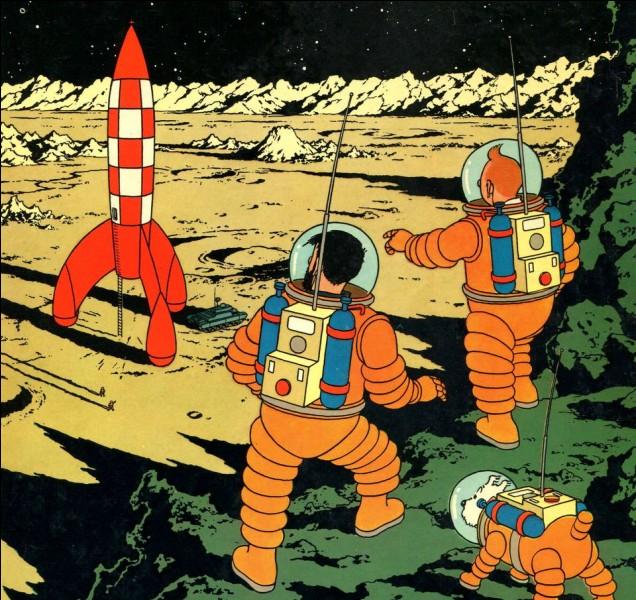 """À la fin de l'album """"On a marché sur la Lune"""", quel mot ramène le capitaine Haddock du coma ?"""