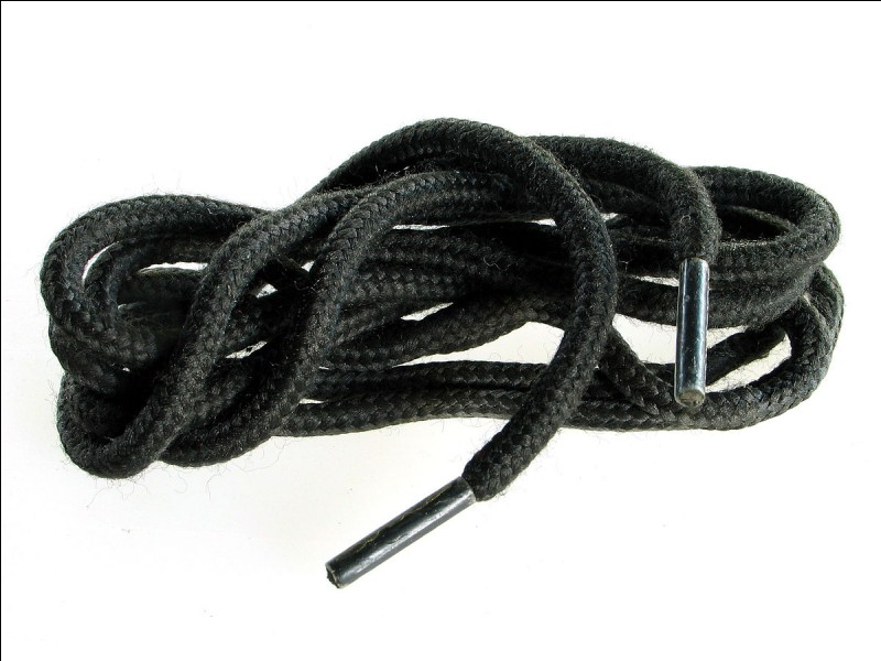 Quel est le nom de l'extrémité d'un lacet ?