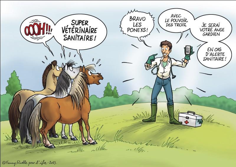 Quelle autre orientation, ce professionnel des animaux, peut-il suivre ?
