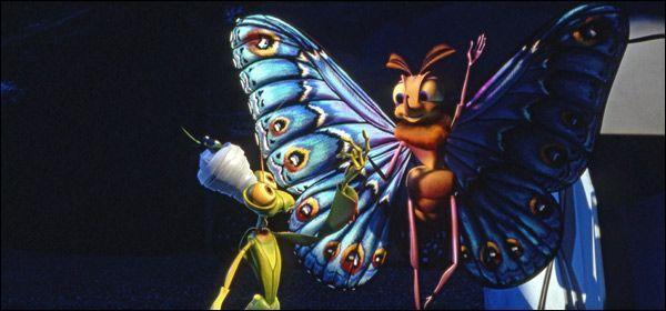Ce beau papillon, on le voit dans ...