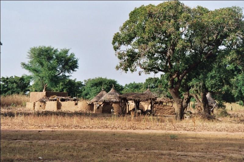 Quel était l'ancien nom du Burkina Faso, avant qu'il soit rebaptisé en 1984 ?