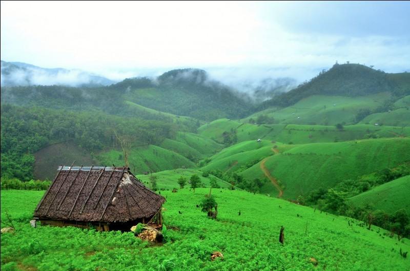 On trouve ces habitations, appréciées pour les vacances, dans un paysage à l'incroyable beauté naturelle. Elles sont faites de bois et de bambou, avec des poteaux soulevés.Ces maisons sont vivantes : il y a un flux d'air de rafraîchissement naturel sous le toit et le plancher.Trouvez le pays où la maison peut être aussi un refuge temporaire aux champs, loin du village.