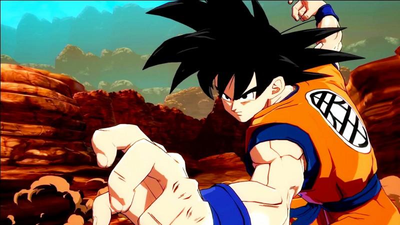 Qui est Goku ?
