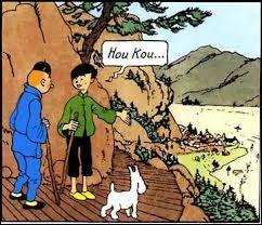 Qui montre Hou Kou à Tintin ?