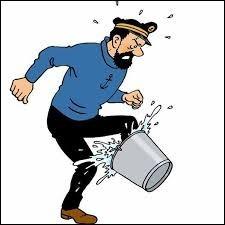 Les personnages de Tintin en images