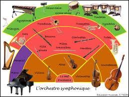 Pourriez-vous jouer dans un orchestre symphonique ?