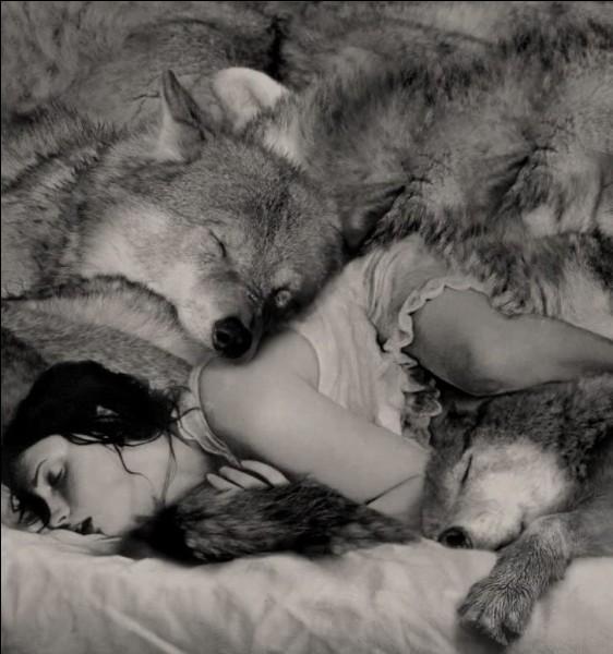 """Prostituée de Rome surnommée """"la louve"""" ayant recueilli les jumeaux Remus et Romulus. Qui est-elle ?"""