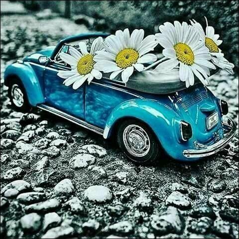 """Dans une voiture (française) où se situe """"la place du mort"""" ?"""