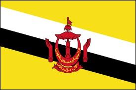 Comment s'appelle le sultan de Brunei actuellement ?