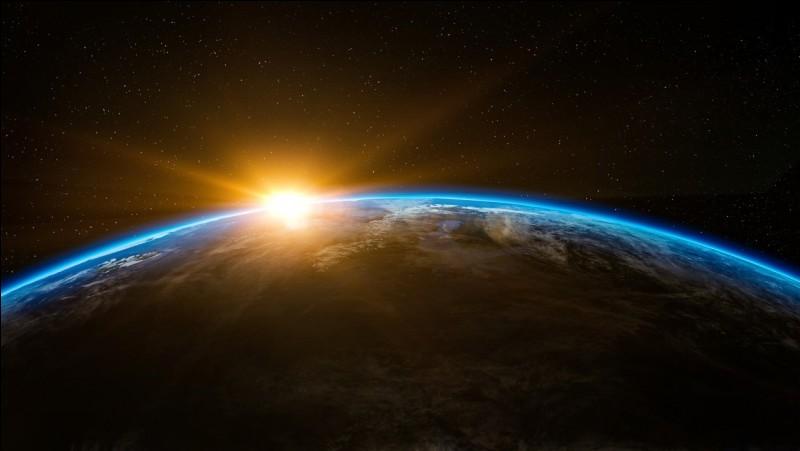 Quel fut le premier être vivant à être mis en orbite autour de la terre ?
