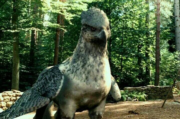 Quelle créature de ''Harry Potter'' êtes-vous ?