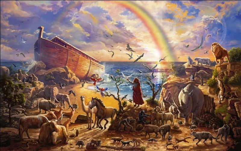 Dieu m'a demandé de faire un grand bateau pour préserver les animaux et l'humanité de l'extinction. (Genèse 6 : 9-22)