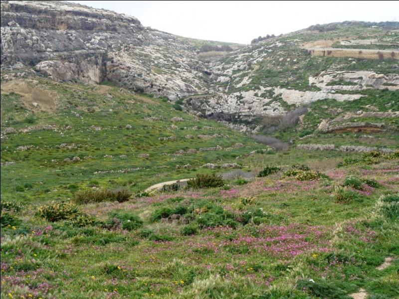 """Un peu d'Histoire. Quel peuple assiégea Malte en 1565 lors de ce que l'on appelle toujours aujourd'hui le """"Grand Siège"""" ?"""