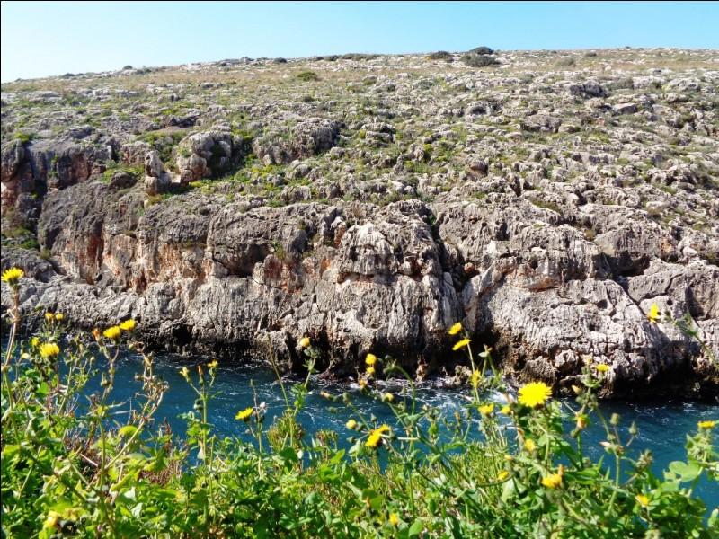 L'archipel maltais compte trois îles principales. Laquelle n'en fait pas partie ?