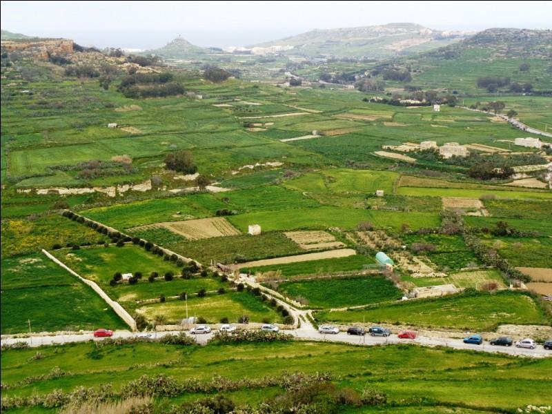 La citadelle de Rabat (de son nom maltais) est l'une des attractions touristiques majeures de l'île de Gozo. Quel est le nom anglais de cette ville de Rabat, la plus grande de Gozo ?
