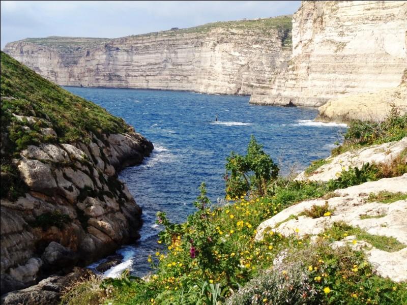 La station balnéaire se St-Julian's est sans doute la plus connue de Malte. À quoi doit-elle principalement sa réputation et son attrait ?