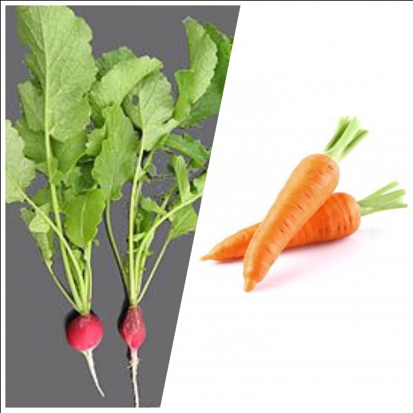 Quelle verdure a un taux modéré en calcium ?