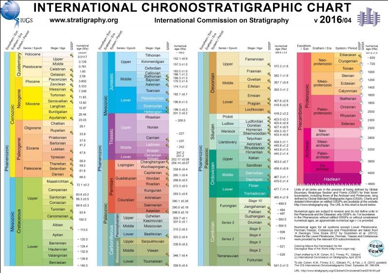 Quel ordre a la répartition stratigraphique la plus grande ?