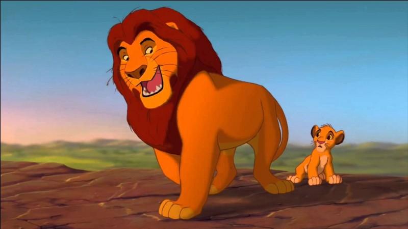 Comment s'appelle le fils de Mufasa ?