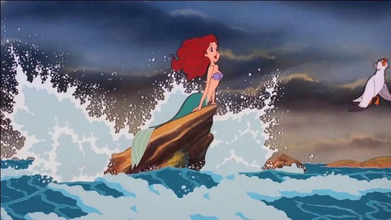 Ariel aime un...