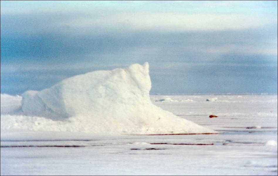 Quelle formation de glace est constituée d'eau de mer ?
