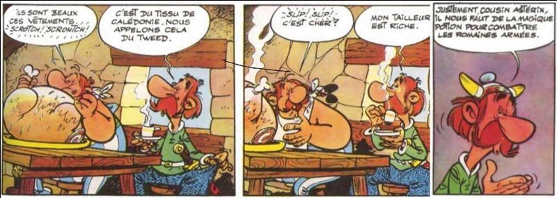 On apprend à connaître la famille d'Astérix avec son cousin germain ! Suivant la tradition gauloise d'Uderzo et de Goscinny, on apprend également qu'Astérix serait l'importateur d'une boisson qui deviendra traditionnel dans le pays de ce cousin ! N'est-il pas ?Dans la version allemande, il se nomme « Teefax » !Qui est-il ?