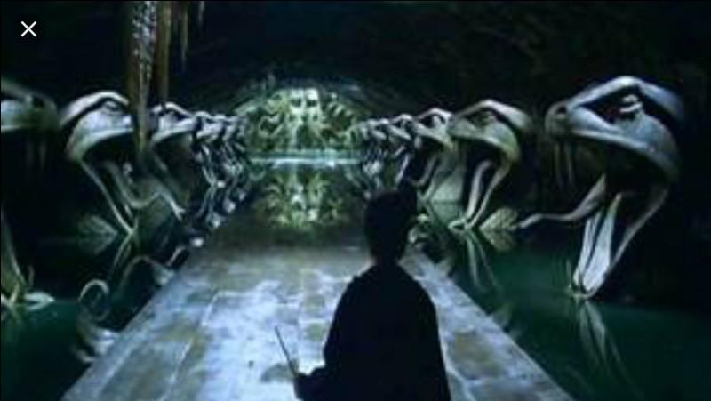 Par quel moyen peut-on accéder à la Chambre des Secrets ?