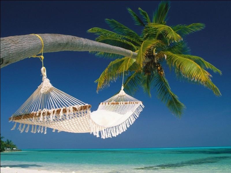 Quel est votre lieu idéal pour passer des vacances agréables ?