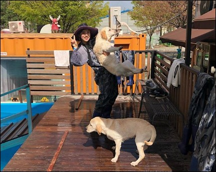 Que nous propose cette image, tout à fait ordinaire à première vue, de cette jeune fille amenant ses animaux au vétérinaire ?