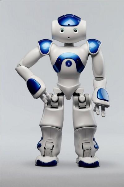 Quelle est la mission du robot Nao V6 ?