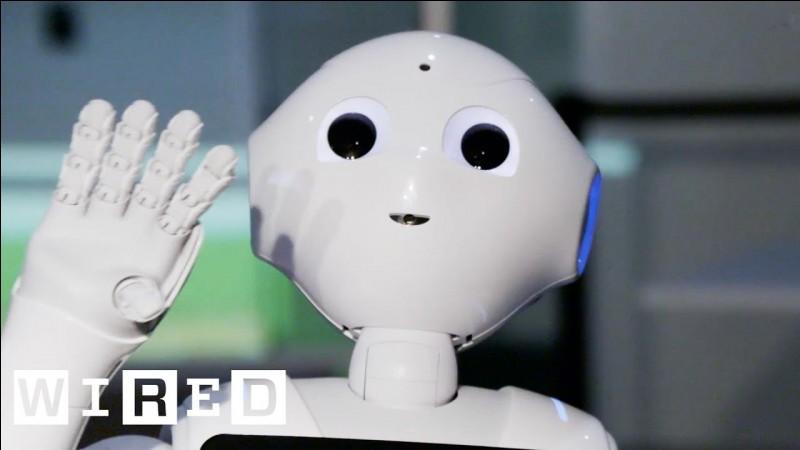 Quelle est la mission du robot Robo Simian ?
