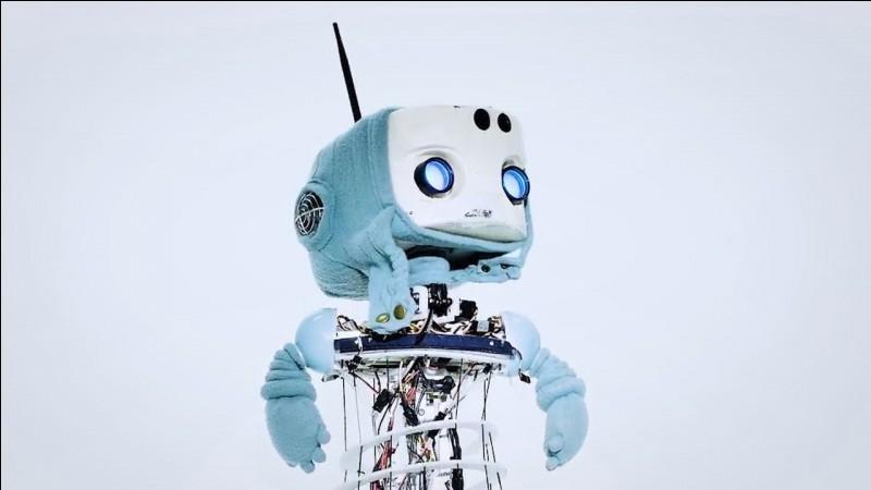 Quelle est la mission du robot Pepper ?