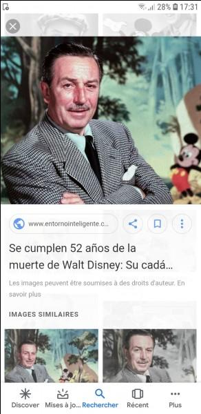 Grâce à quelle chanteuse la France connaît-elle Disney ?