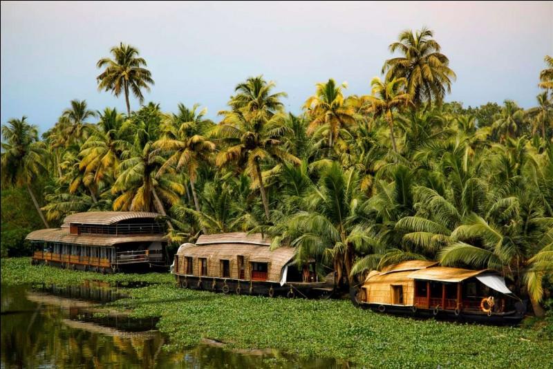 À la pointe sud du pays, l'État du Kerala se tourne résolument vers le tourisme, voire l'écotourisme. La photo montre des habitations flottantes sur le lac Vembanad. Les houseboats ressemblent à une barge asiatique recouverte d'un toit arrondi en palmes tressées, équipés d'1 ou 2 chambres à coucher. Dans quel pays voit-on ces maisons sous leurs frondaisons épaisses de cocotiers et de bananiers ?