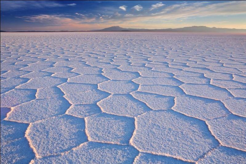 Le salar d'Uyni, que l'on voit ici, est la plus grande étendue de sel au monde. Indice pour les amateurs : notre photo a été prise au lever du soleil. Bref, il s'agit d'un désert de sel à 3 658 m d'altitude, qui s'étend sur une superficie totale de plus de 10 500 km².Où se trouve ce phénomène hors de l'ordinaire ?