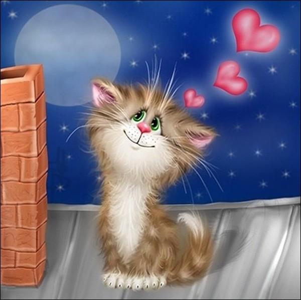 Et enfin, mon premier est donc un chat, quel est mon second pour que mon tout soit un melon ?