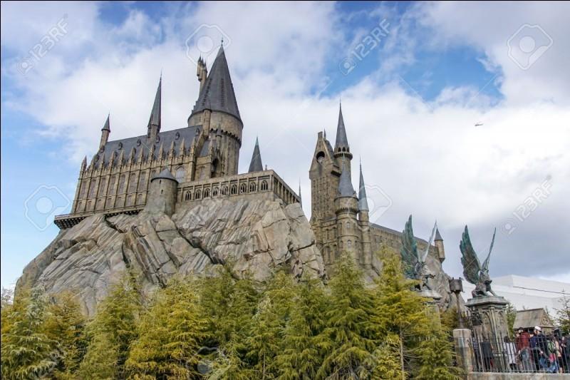 Qui es-tu dans Harry Potter ?