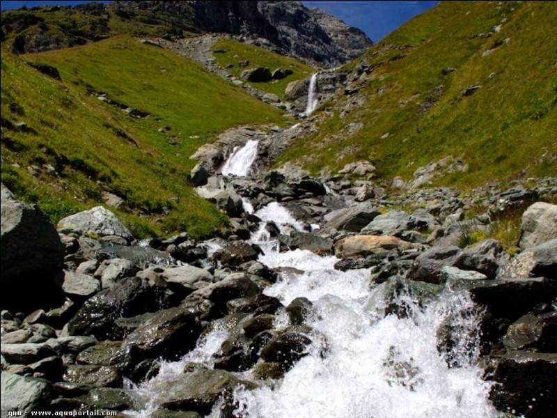 """Qu'est-ce qui manque aux lettres """"tor…"""" pour avoir un cours d'eau de montagne ?"""