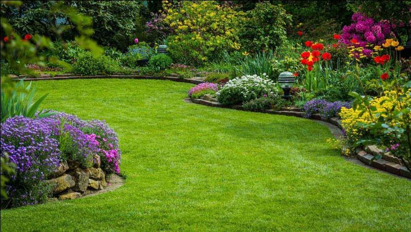 """Traduisez """"jardin"""" :"""