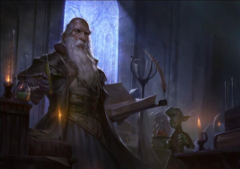 En bon magicien, tu te dois de te trouver une occupation un minimum «mystique» pour occuper tes journées. Laquelle serait-ce ?