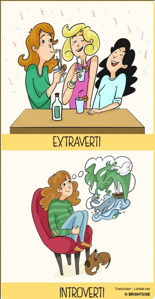 Tu trouveras peut-être que ça n'a vraiment aucun lien, mais es-tu plus introverti ou extraverti ? Ordonné ou bordélique ?