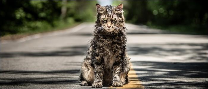 """Quel est le nom du chat de la famille Creed dans """"Simetierre"""" ?"""