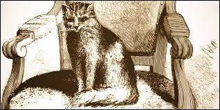 Quel était le nom du chat du pape Léon XII et de Chateaubriand ?