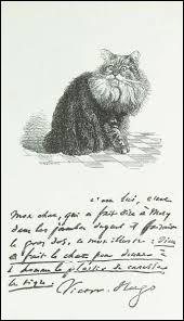 Comment se prénommait le chat de Victor Hugo ?