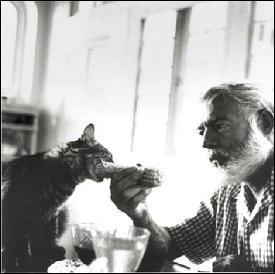 Avec quel chat Hemingway a-t-il vécu à la capitale ?