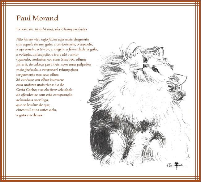 Qui était le chat de Paul Morand ?