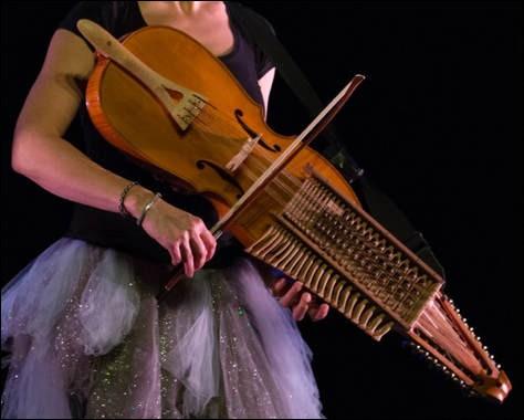 """La majorité des cordes (12 sur 16) du """"nickelharpa"""" (ou """"vièle à clavier"""") ci-dessus sont dites """"sympathiques"""" : pourquoi ?"""
