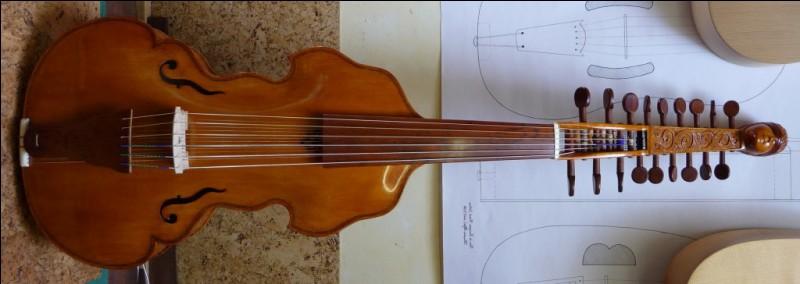 """Pour prolonger la question soulevée précédemment, les instruments à cordes sympathiques sont appelés généralement """"instruments ..."""" (Complétez !)"""